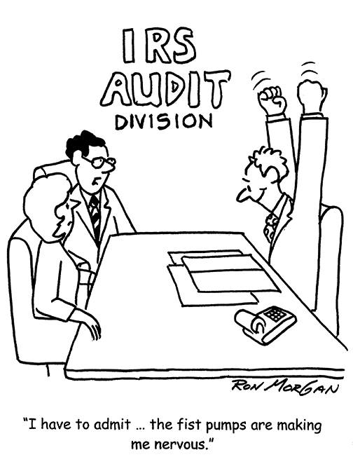 IRS Audit cartoon